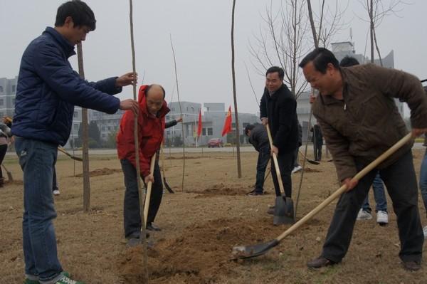 蚌埠市组织开展植树系列活动