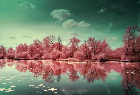 <b>红外线下的美景 如临仙</b>