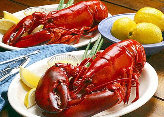 <b>吃货快接招 美味龙虾来</b>