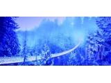<b>冬日里的加拿大 体验梦</b>