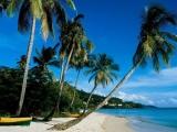 <b>自驾游:海南岛自驾宝典</b>