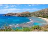 <b>浪漫海岛情 夏威夷自由</b>